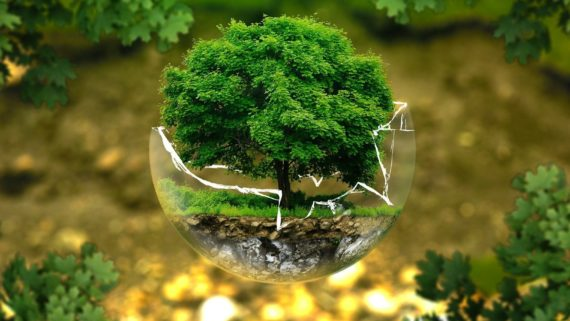 Eco-Pack, prosegue il progetto promosso da Fondirigenti sul territorio emiliano