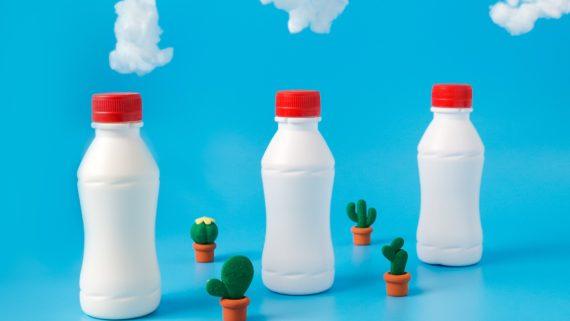 Bioplastiche compostabili o biodegradabili: facciamo chiarezza